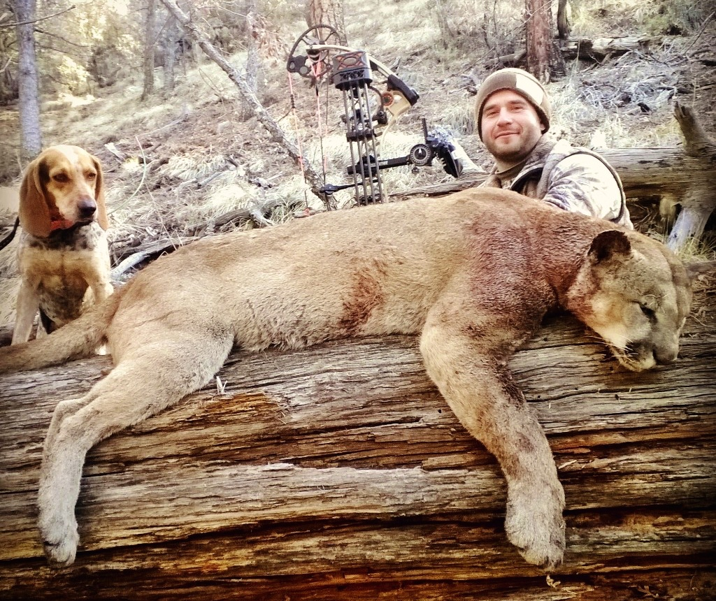 Mountain lions in ohio 2017 best image konpax 2017 for Ohio fishing license 2017